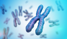 Genetics Concept. Many X Chromosomes With DNA Molecules. 3D Rendered Illustration.