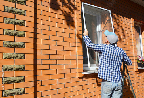 Láminas  Worker installing mosquito net or mosquito wire screen on brick house window