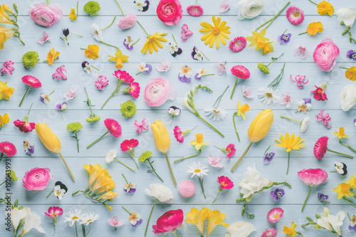 Zdjęcie XXL Wiosenne kwiaty