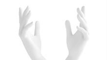 White Background 3d Hand Gestu...