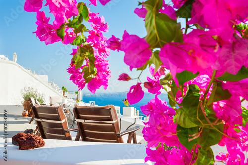 Poster Rose Beautiful terrace with pink flowers. Santorini island, Greece