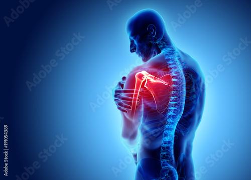 Obraz Shoulder painful skeleton x-ray, 3D illustration. - fototapety do salonu