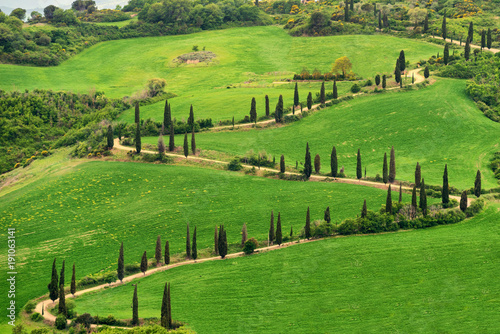 Deurstickers Toscane Tuscany, rural sunset landscape. Countryside farm, cypresses trees, green field,Italy, Europe.
