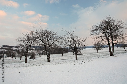 Poster Melon Winterlandschaft in Thüringen
