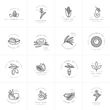 Vector Set Design Templates An...