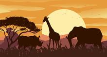 Silhouette Scene With Wild Ani...