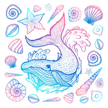 Poster With Whale, Seashells And Starfishes. Marine Background. Hand Drawn Illustration In Doodle Style