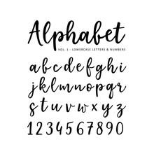 Hand Drawn Vector Alphabet. Br...