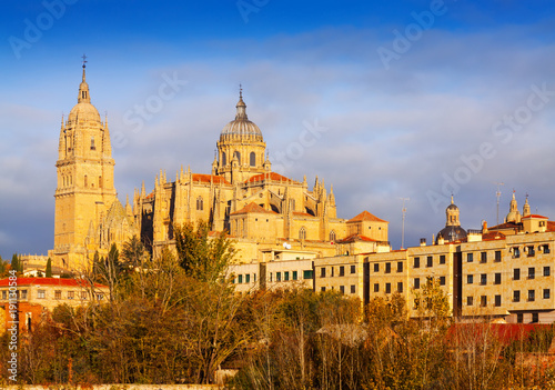 In de dag Madrid view of Salamanca Cathedral in autumn