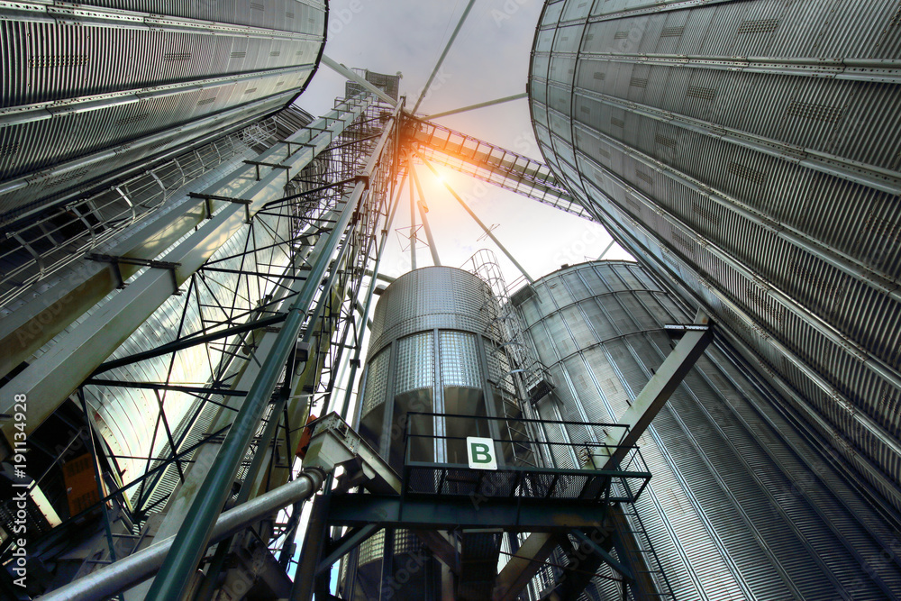 Fototapety, obrazy: Agricultural Silos in Ontario, Canada
