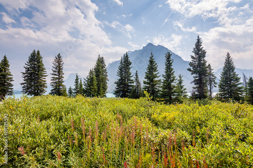 Fototapeta Vulture Peak of Bow Lake obraz na płótnie