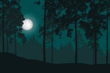 Vector illustration of a night landscape with forest and night sky