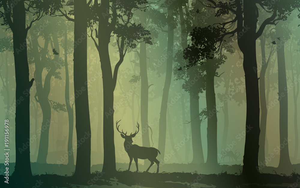 Deciduous forest with birds and deer