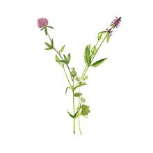 Floral Watercolor Letter Y
