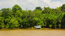 Rio Amazonas By Boat