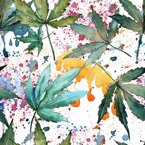 Wzór liści konopi w stylu przypominającym akwarele. Aquarelle dziki liść dla tła, tekstury, wzoru opakowania, ramki lub obramowania.