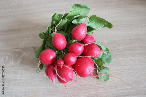 Botte de radis ronds
