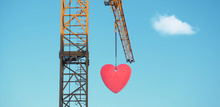 Love Is In The Air - Crane Wit...