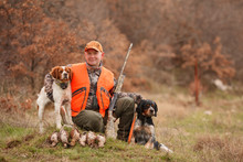 Hunter With Two Hunting Dogs, A Gun And A Woodcock After A Hunt