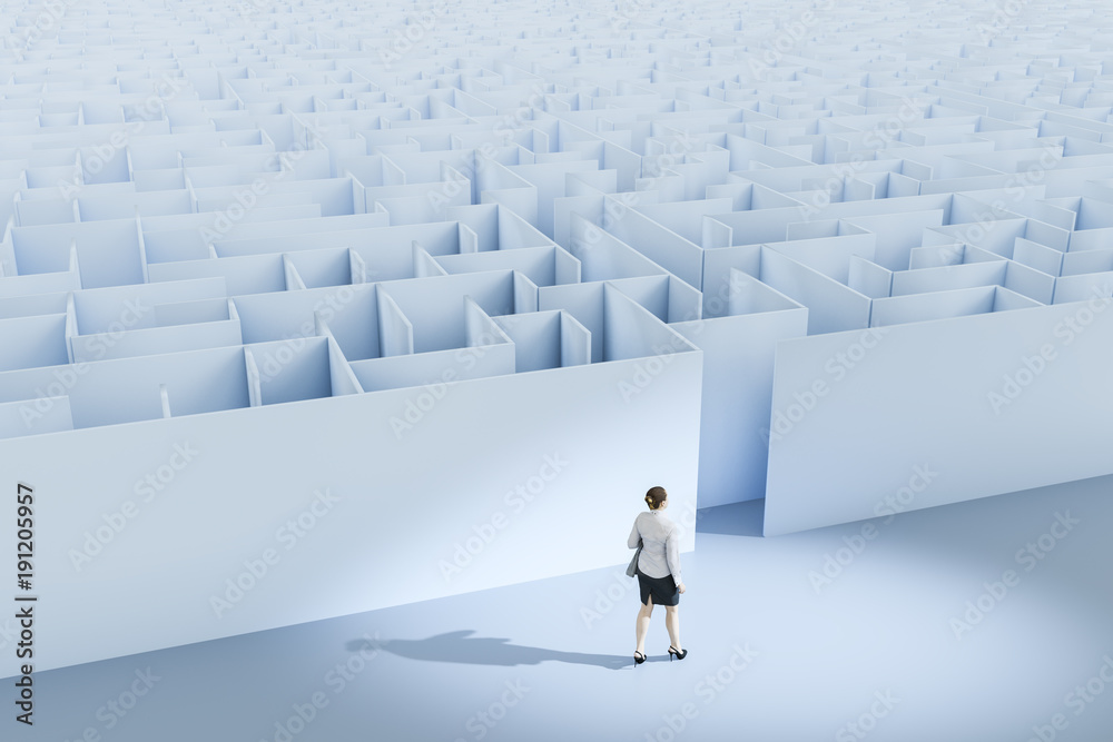Fototapeta a business woman at the maze