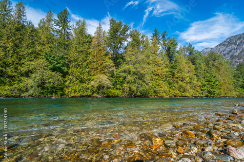 Photo Transparent river in the mountain forest