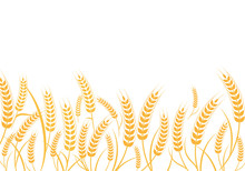 Agriculture Wheat Vector Illustration Design