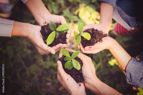 Fotografie, Obraz  Young asian people holding young plant with soil,growing tree,support concept