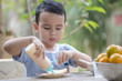 Portrait Thai boy eating bread with condensed milk and fruits on table in the morning at garden home. Breakfast is beneficial to the body and brain. He has white skin and cute face. Soft focus.