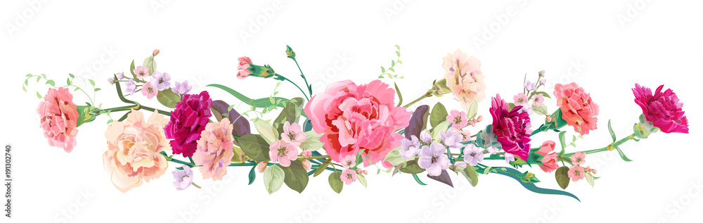 Fototapety, obrazy: Panoramic view: bouquet of carnation schabaud, spring blossom. Horizontal border: red, pink flowers, buds, leaves on white background. Digital draw illustration in watercolor style, vintage, vector