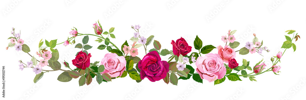 Fototapety, obrazy: Panoramic view: bouquet of roses, spring blossom. Horizontal border: red, mauve, pink flowers, buds, green leaves on white background. Digital draw illustration in watercolor style, vintage, vector