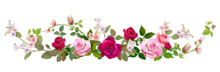 NaklejkaPanoramic view: bouquet of roses, spring blossom. Horizontal border: red, mauve, pink flowers, buds, green leaves on white background. Digital draw illustration in watercolor style, vintage, vector