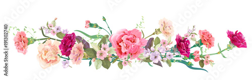 Fototapeta Panoramic view: bouquet of carnation schabaud, spring blossom. Horizontal border: red, pink flowers, buds, leaves on white background. Digital draw illustration in watercolor style, vintage, vector obraz