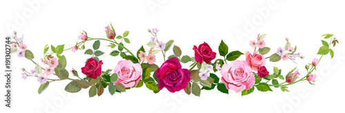 Fototapeta Panoramic view: bouquet of roses, spring blossom. Horizontal border: red, mauve, pink flowers, buds, green leaves on white background. Digital draw illustration in watercolor style, vintage, vector obraz