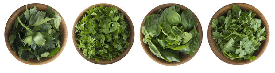 Fototapeta Przyprawy Fresh coriander, celery, cilantro and basil leaves in wooden bowl isolated on white background. Top view.