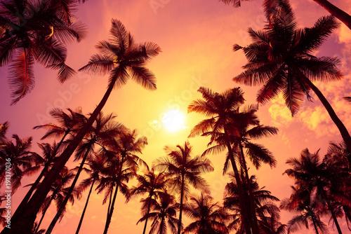 Foto auf AluDibond Hochrote Warm tropical sunset