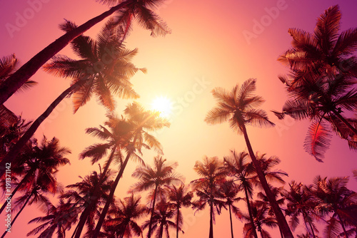 Foto auf AluDibond Hochrote Tropical sunset on a beach with palm trees
