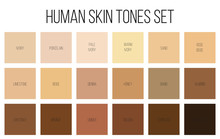 Creative Vector Illustration Of Human Skin Tone Color Palette Set Isolated On Transparent Background. Art Design. Abstract Concept Person Face, Body Complexion Graphic Element For Cosmetics