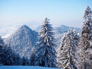 Fototapeta Inspiracje na zimę Zimowy krajobraz polskich gór Pienin