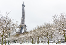 Winter In Paris In The Snow. T...