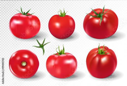 Fototapeta Tomato set. Pink salad tomato collection. Photo-realistic vector tomatoes on transparent background. obraz