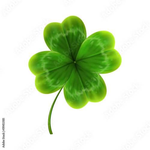 Cuadros en Lienzo  green leave of clover. realistic vector