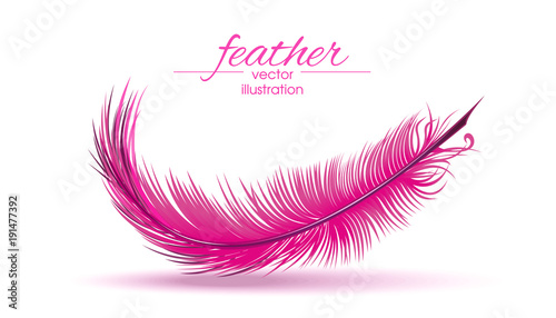 Cuadros en Lienzo Light pink feather isolated on white background