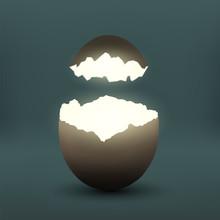 Broken Chicken Egg