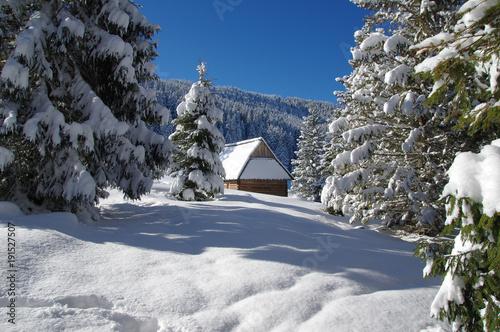 Zdjęcie XXL Chatka na Rusinowej Polanie Zimą