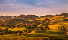 Pasture Lands And California O...