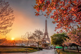 Fototapeta Fototapety z wieżą Eiffla - Eiffel Tower with spring trees in Paris, France