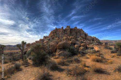 Fotografija Joshua Tree Rock Formation