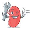 Mechanic kidney mascot cartoon style