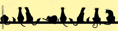 obraz lub plakat cats. silhouette. seamless pattern
