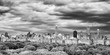 Black and white panoramic picture of stormy sky over the Central Park and Manhattan skyline, New York City, USA.